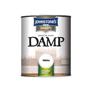 Damp Paint